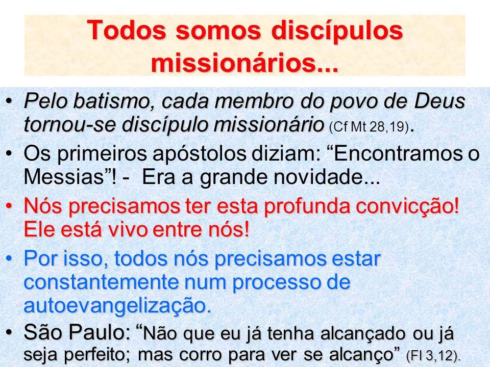 Todos somos discípulos missionários... Pelo batismo, cada membro do povo de Deus tornou-se discípulo missionárioPelo batismo, cada membro do povo de D