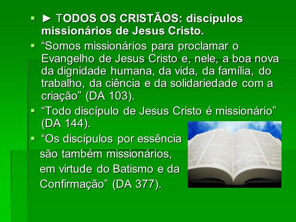 TODOS OS CRISTÃOS: discípulos missionários de Jesus Cristo. TODOS OS CRISTÃOS: discípulos missionários de Jesus Cristo. Somos missionários para procla