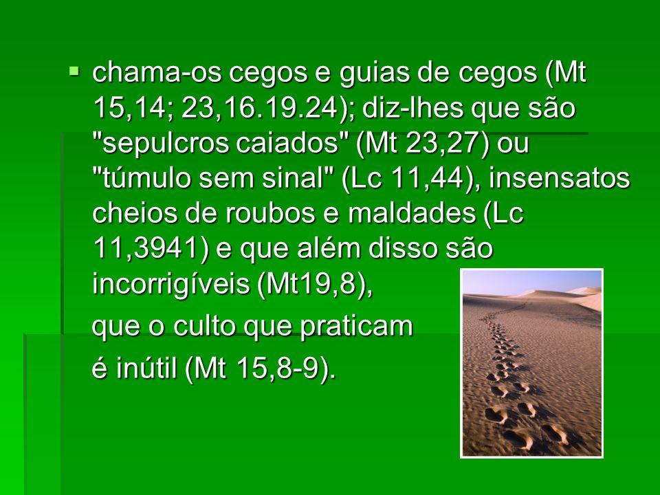 chama-os cegos e guias de cegos (Mt 15,14; 23,16.19.24); diz-lhes que são