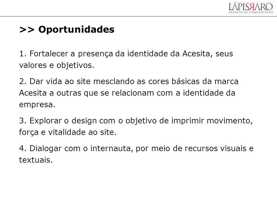 >> Oportunidades 1.Fortalecer a presença da identidade da Acesita, seus valores e objetivos.