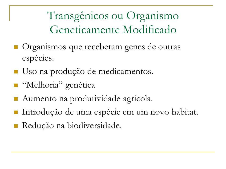 Transgênicos ou Organismo Geneticamente Modificado Organismos que receberam genes de outras espécies. Uso na produção de medicamentos. Melhoria genéti