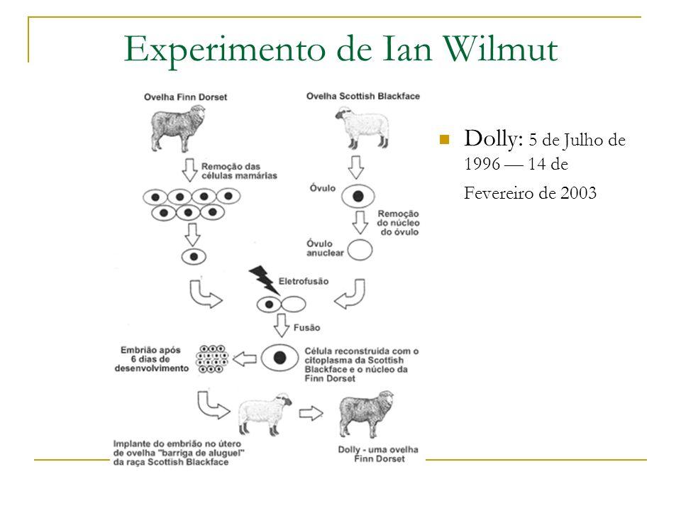 Experimento de Ian Wilmut Dolly: 5 de Julho de 1996 14 de Fevereiro de 2003