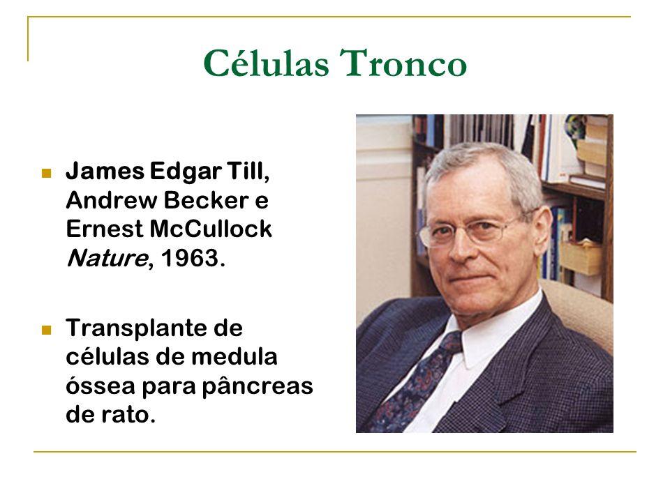 Células Tronco James Edgar Till, Andrew Becker e Ernest McCullock Nature, 1963. Transplante de células de medula óssea para pâncreas de rato.