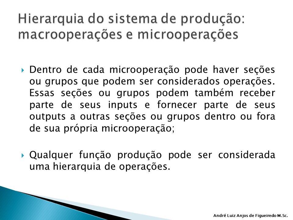 André Luiz Anjos de Figueiredo M.Sc. Dentro de cada microoperação pode haver seções ou grupos que podem ser considerados operações. Essas seções ou gr
