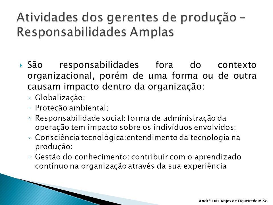 André Luiz Anjos de Figueiredo M.Sc. São responsabilidades fora do contexto organizacional, porém de uma forma ou de outra causam impacto dentro da or
