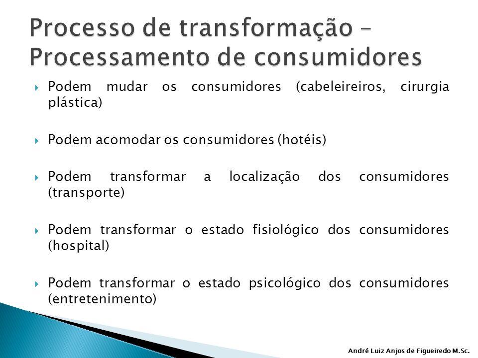 André Luiz Anjos de Figueiredo M.Sc. Podem mudar os consumidores (cabeleireiros, cirurgia plástica) Podem acomodar os consumidores (hotéis) Podem tran