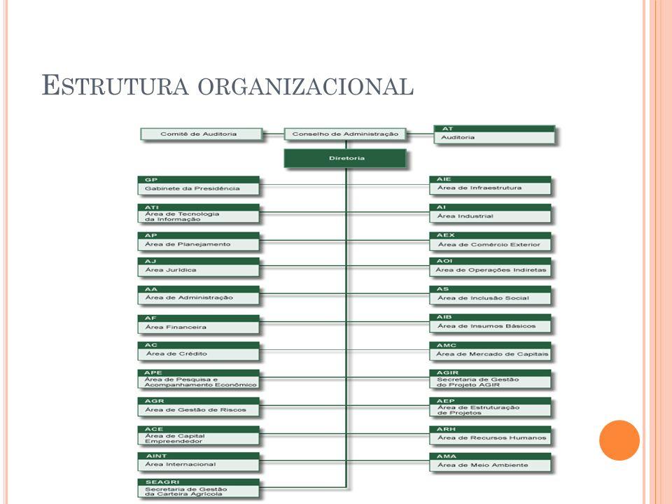 E STRUTURA ORGANIZACIONAL