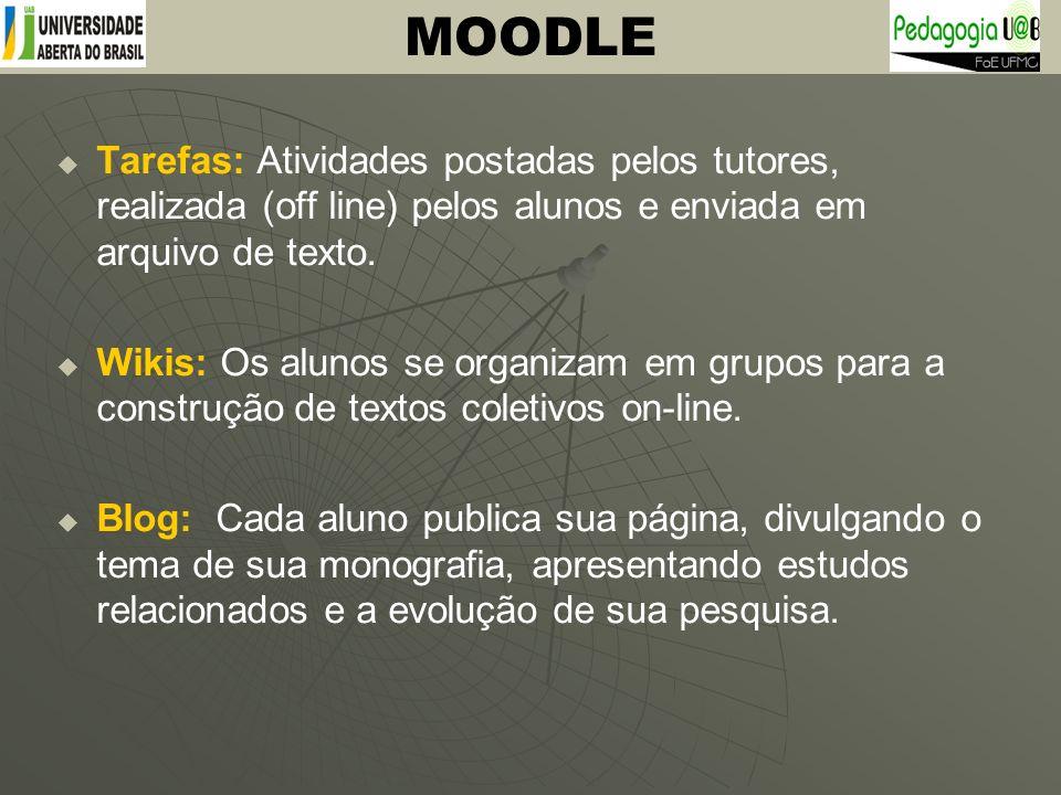 Tarefas: Atividades postadas pelos tutores, realizada (off line) pelos alunos e enviada em arquivo de texto. Wikis: Os alunos se organizam em grupos p