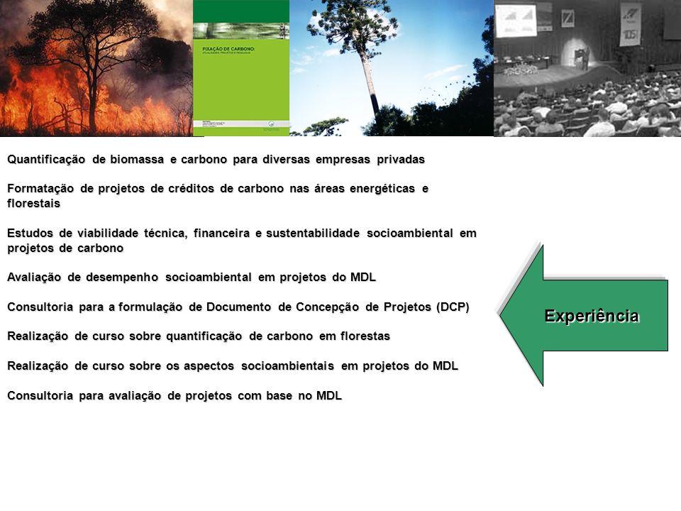 Experiência Quantificação de biomassa e carbono para diversas empresas privadas Formatação de projetos de créditos de carbono nas áreas energéticas e florestais Estudos de viabilidade técnica, financeira e sustentabilidade socioambiental em projetos de carbono Avaliação de desempenho socioambiental em projetos do MDL Consultoria para a formulação de Documento de Concepção de Projetos (DCP) Realização de curso sobre quantificação de carbono em florestas Realização de curso sobre os aspectos socioambientais em projetos do MDL Consultoria para avaliação de projetos com base no MDL