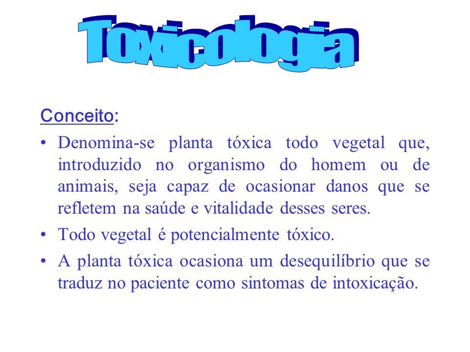 Conceito: Denomina-se planta tóxica todo vegetal que, introduzido no organismo do homem ou de animais, seja capaz de ocasionar danos que se refletem n