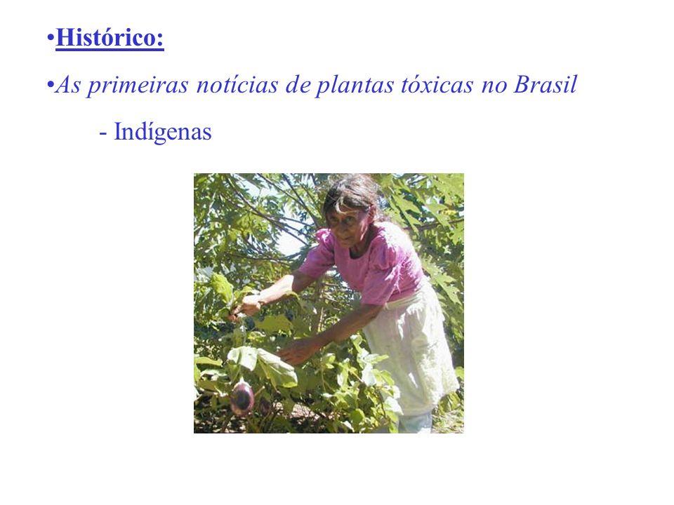 Histórico: As primeiras notícias de plantas tóxicas no Brasil - Indígenas