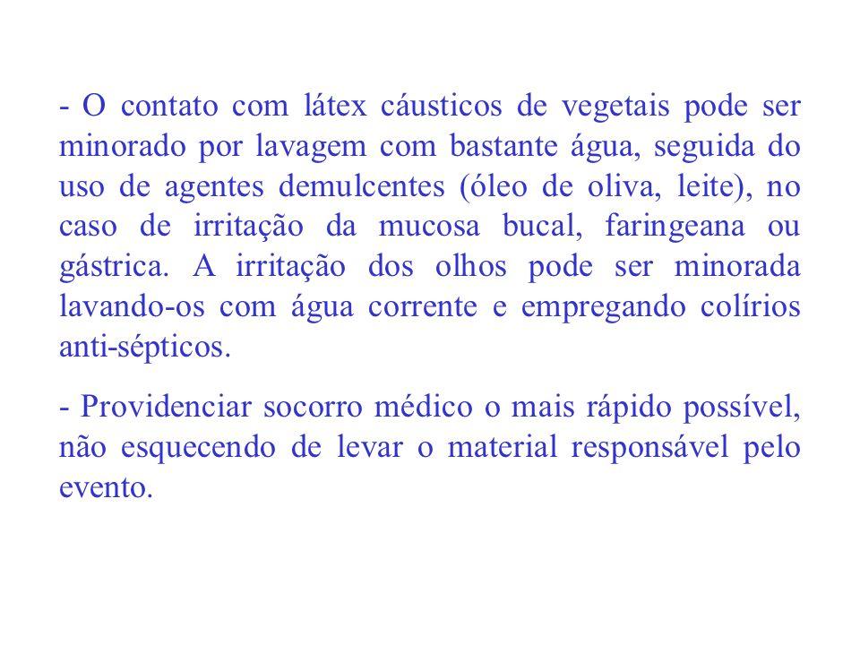 - O contato com látex cáusticos de vegetais pode ser minorado por lavagem com bastante água, seguida do uso de agentes demulcentes (óleo de oliva, lei