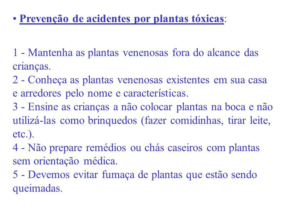 Prevenção de acidentes por plantas tóxicas: 1 - Mantenha as plantas venenosas fora do alcance das crianças. 2 - Conheça as plantas venenosas existente