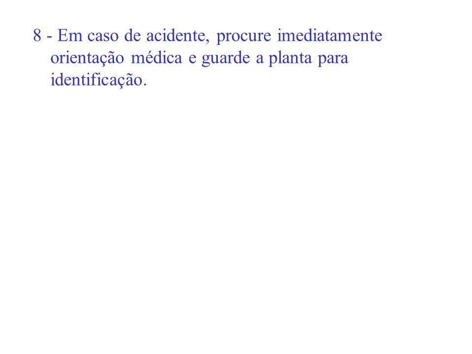 8 - Em caso de acidente, procure imediatamente orientação médica e guarde a planta para identificação.