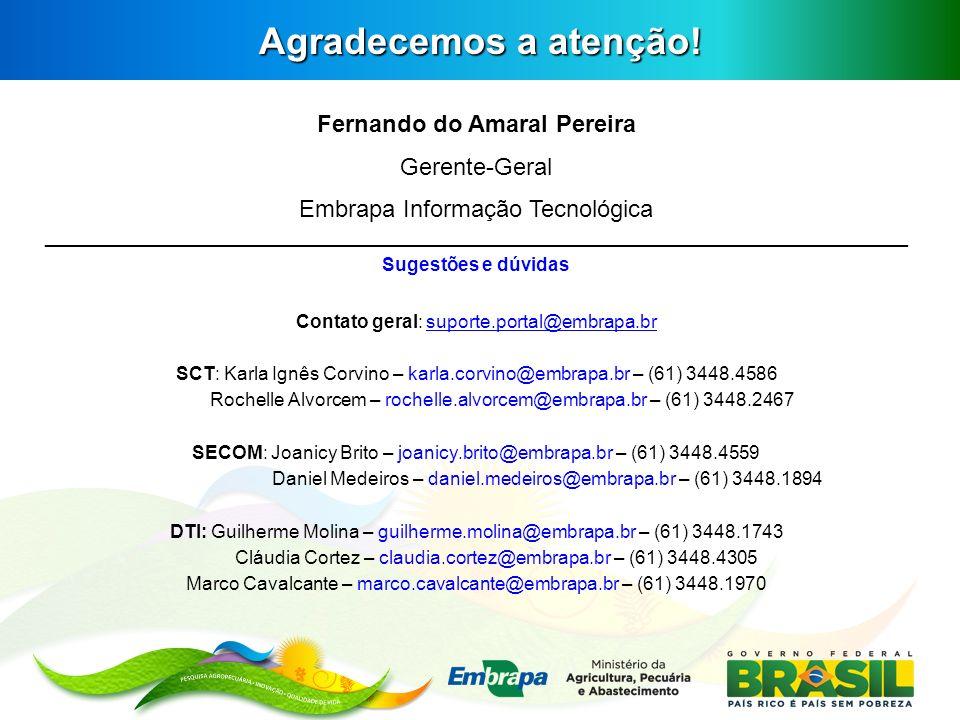 Agradecemos a atenção! Fernando do Amaral Pereira Gerente-Geral Embrapa Informação Tecnológica _______________________________________________________