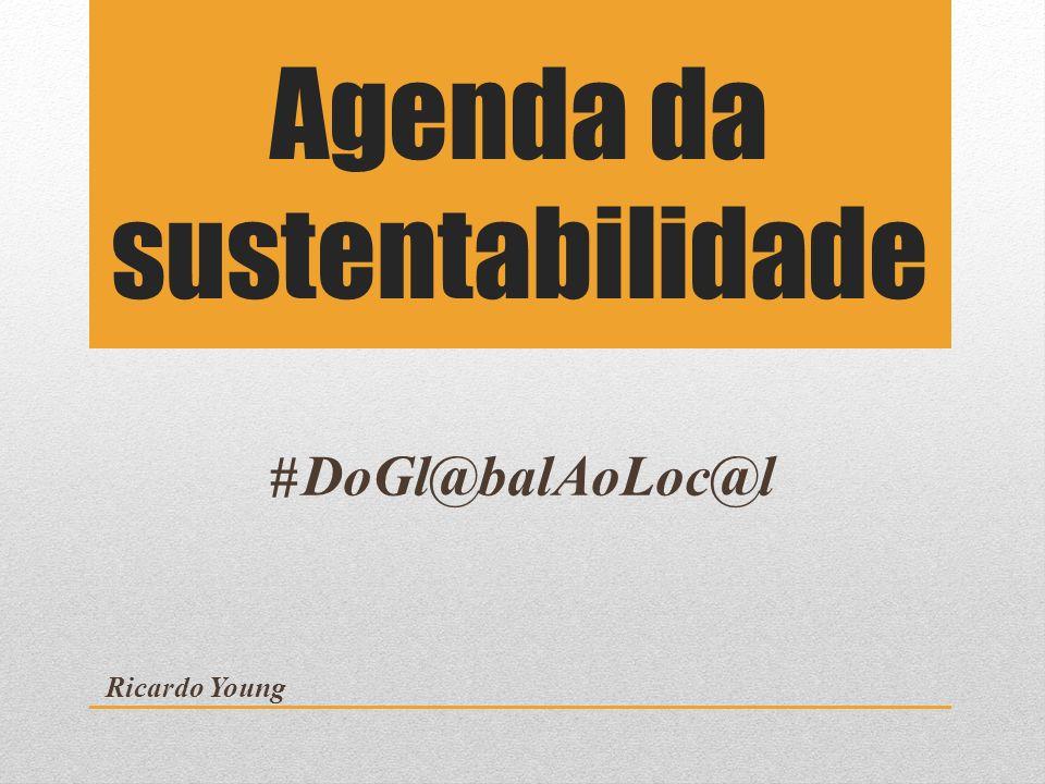 Agenda da sustentabilidade DoGl@balAoLoc@l Ricardo Young #