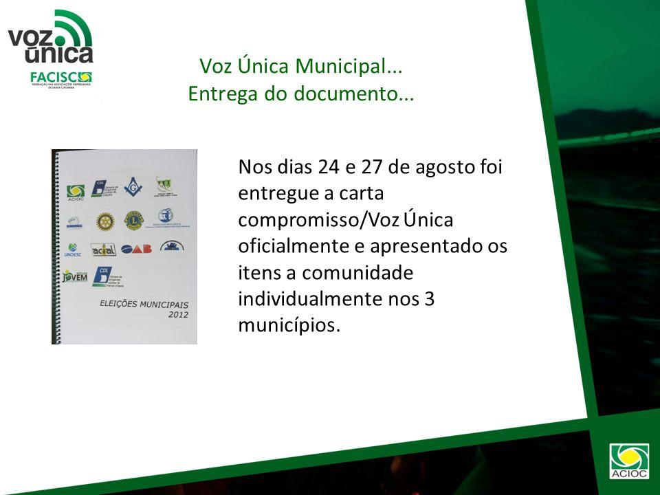 Voz Única Municipal... Estruturação e Formalização do documento...