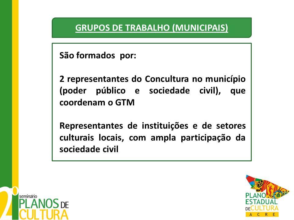 GRUPOS DE TRABALHO (MUNICIPAIS) São formados por: 2 representantes do Concultura no município (poder público e sociedade civil), que coordenam o GTM R
