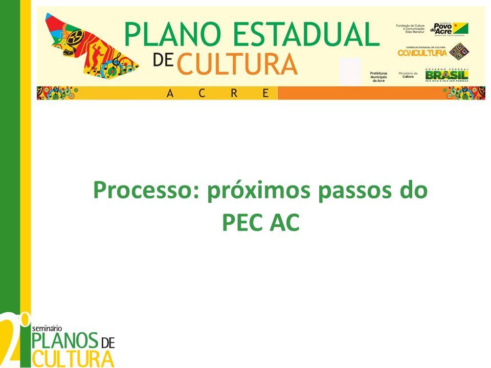 Processo: próximos passos do PEC AC