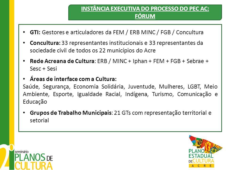 INSTÂNCIA EXECUTIVA DO PROCESSO DO PEC AC: FÓRUM GTI: Gestores e articuladores da FEM / ERB MINC / FGB / Concultura Concultura: 33 representantes inst