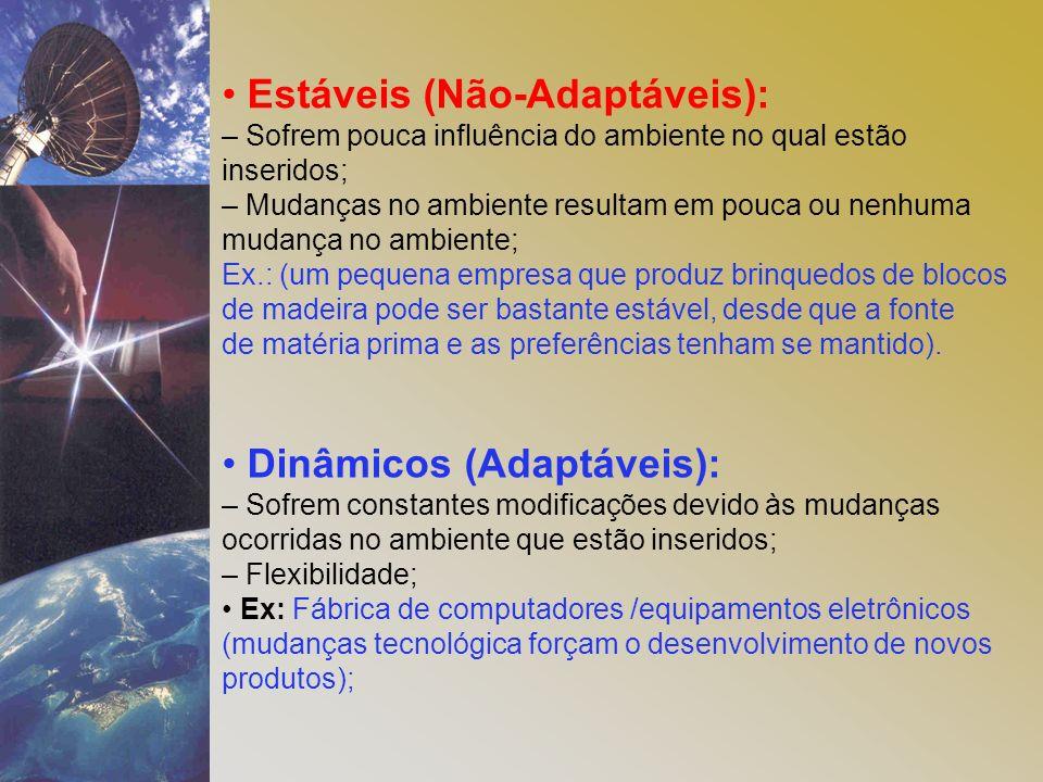 Estáveis (Não-Adaptáveis): – Sofrem pouca influência do ambiente no qual estão inseridos; – Mudanças no ambiente resultam em pouca ou nenhuma mudança