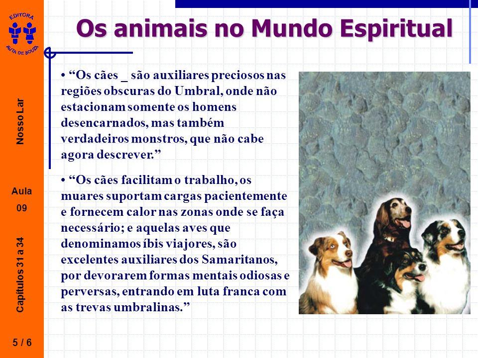 Nosso Lar Aula 09 Capítulos 31 a 34 Os animais no Mundo Espiritual 5 / 6 Os cães _ são auxiliares preciosos nas regiões obscuras do Umbral, onde não estacionam somente os homens desencarnados, mas também verdadeiros monstros, que não cabe agora descrever.