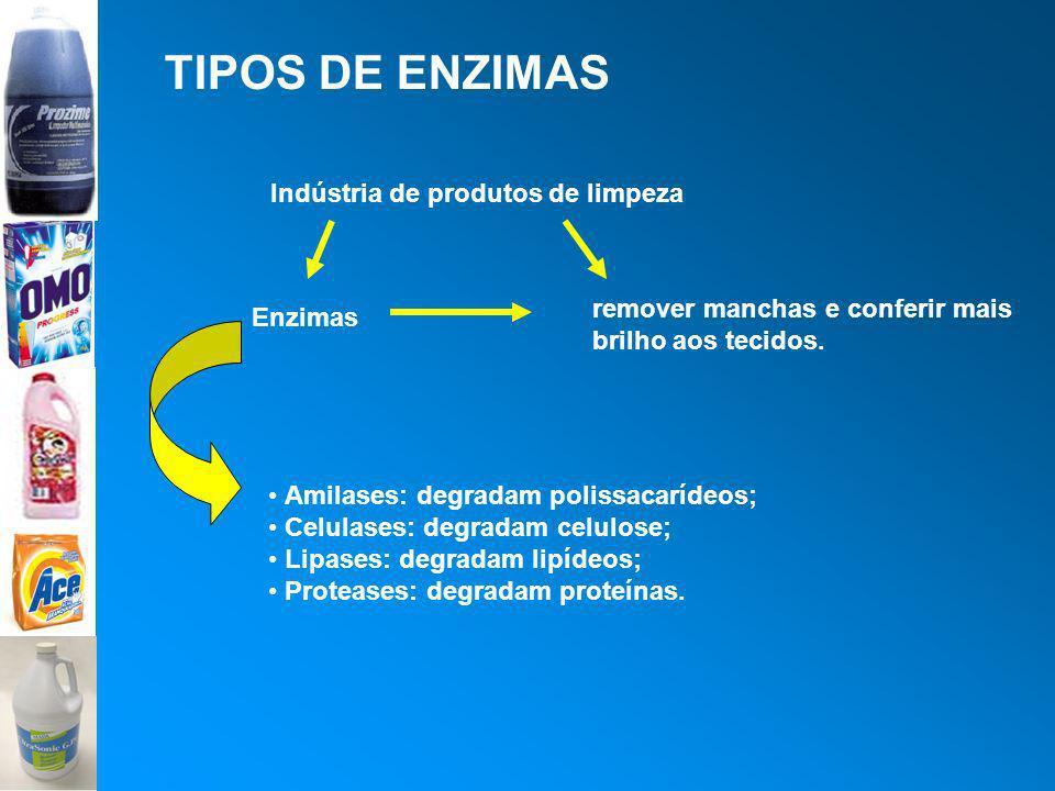 TIPOS DE ENZIMAS Amilases: degradam polissacarídeos; Celulases: degradam celulose; Lipases: degradam lipídeos; Proteases: degradam proteínas. Indústri