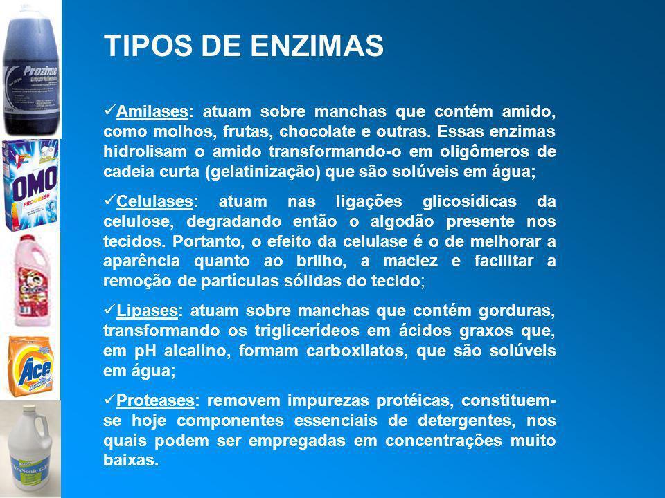 TIPOS DE ENZIMAS Amilases: atuam sobre manchas que contém amido, como molhos, frutas, chocolate e outras. Essas enzimas hidrolisam o amido transforman