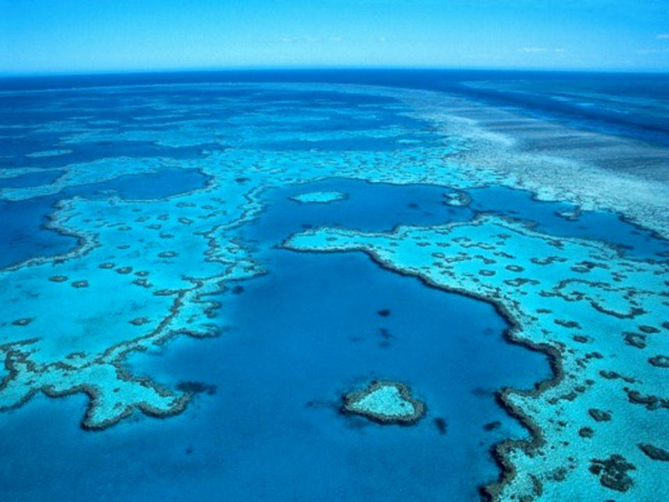 Barreira de Corais – Austrália A Grande Barreira de Coral é o maior recife de coral do mundo, com uma extensão de cerca de 2300 km, situada junto à co
