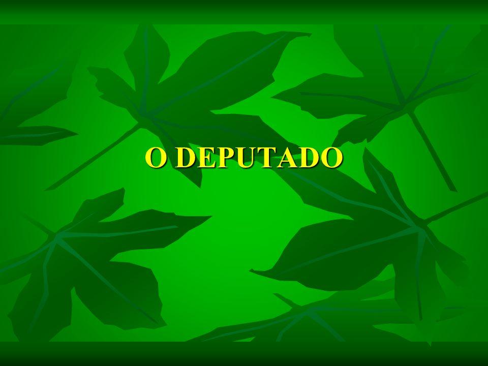 O DEPUTADO