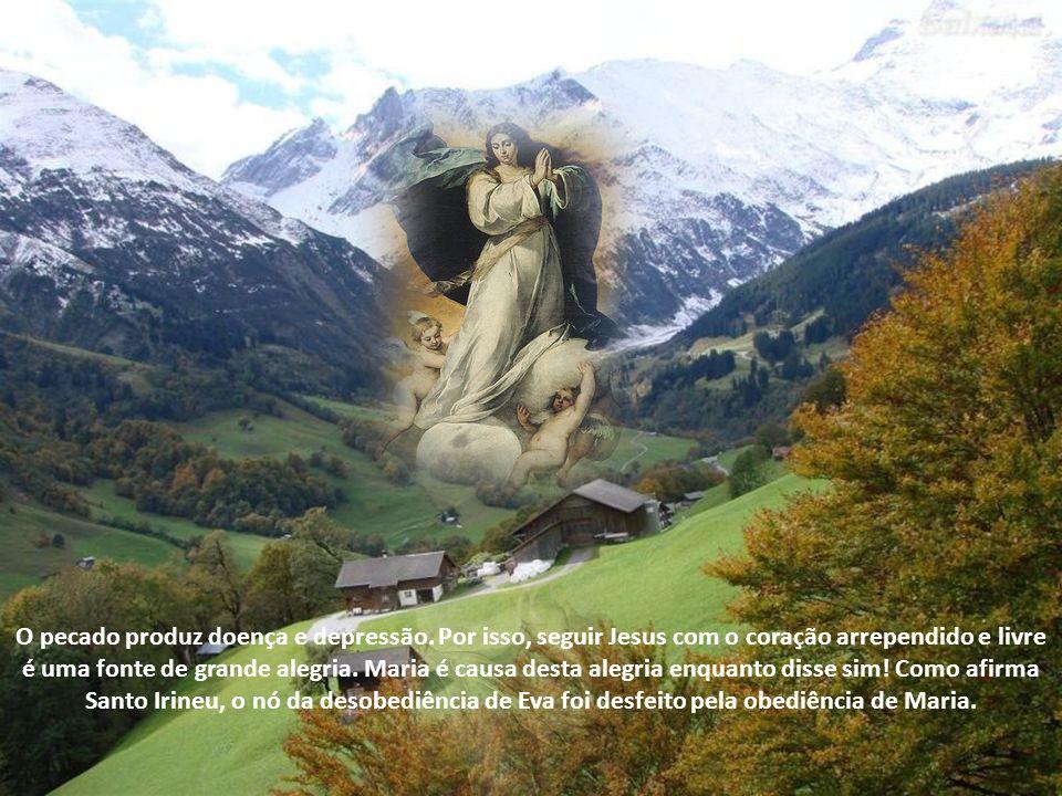 Mas porque a Ladainha chama Nossa Senhora de Causa de Nossa Alegria? É que o pecado da humanidade causou uma grande ressaca. Pecar costuma deixar a ge
