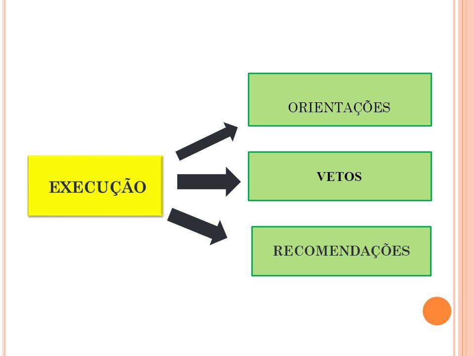 ORIENTAÇÕES EXECUÇÃO RECOMENDAÇÕES VETOS