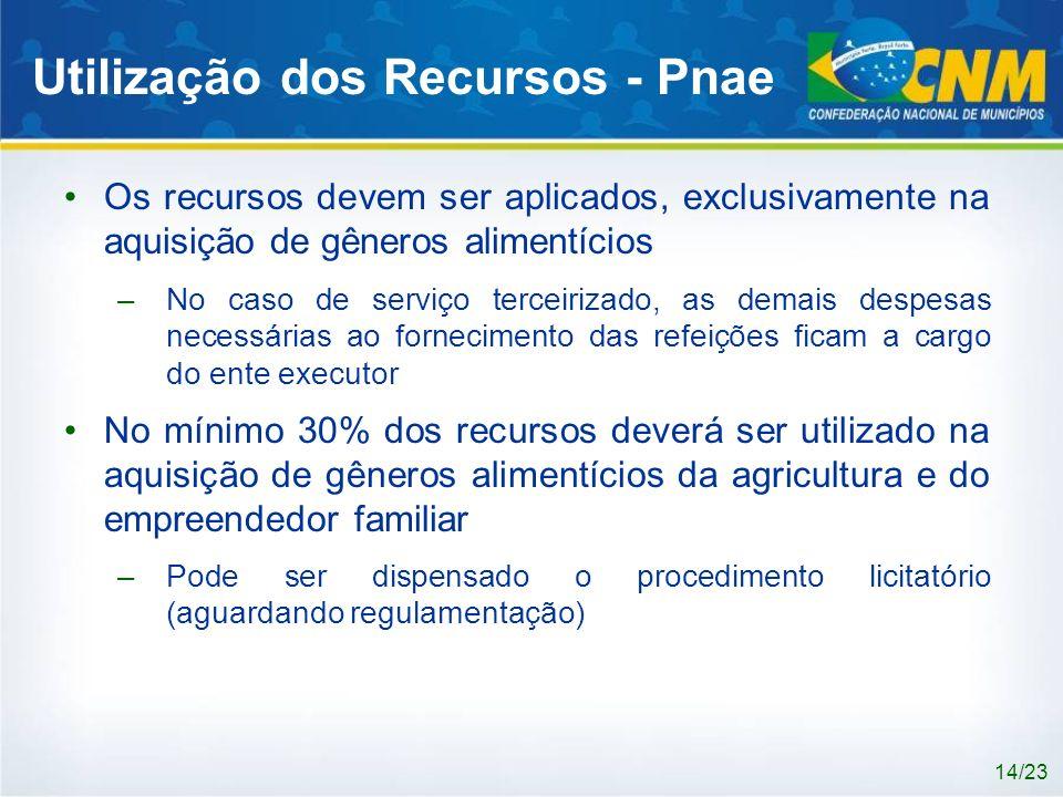 Utilização dos Recursos - Pnae Os recursos devem ser aplicados, exclusivamente na aquisição de gêneros alimentícios –No caso de serviço terceirizado,