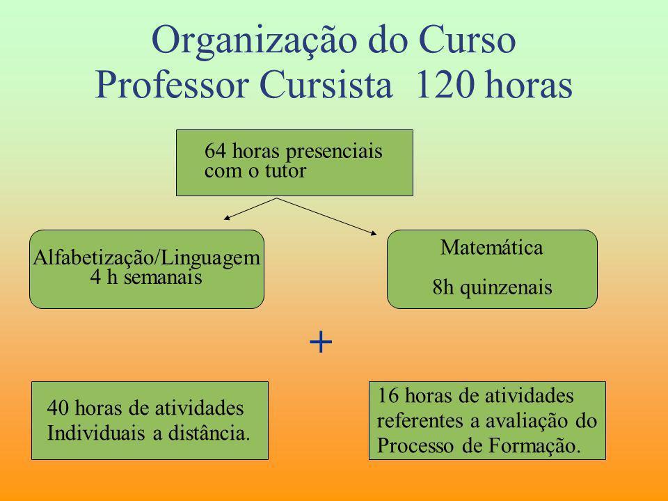 Organização do Curso Professor Cursista 120 horas 64 horas presenciais com o tutor Alfabetização/Linguagem 4 h semanais + Matemática 8h quinzenais 40
