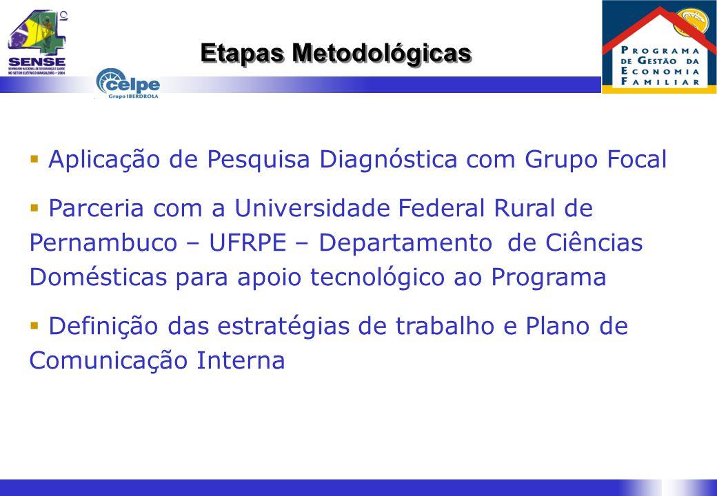 Etapas Metodológicas Aplicação de Pesquisa Diagnóstica com Grupo Focal Parceria com a Universidade Federal Rural de Pernambuco – UFRPE – Departamento