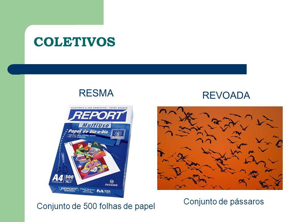 RESMA Conjunto de 500 folhas de papel REVOADA Conjunto de pássaros COLETIVOS