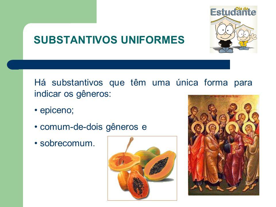 SUBSTANTIVOS UNIFORMES Há substantivos que têm uma única forma para indicar os gêneros: epiceno; comum-de-dois gêneros e sobrecomum.