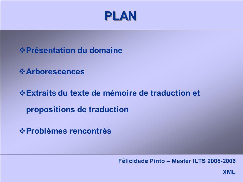 PLAN Présentation du domaine Arborescences Extraits du texte de mémoire de traduction et propositions de traduction Problèmes rencontrés Félicidade Pinto – Master ILTS 2005-2006 XML