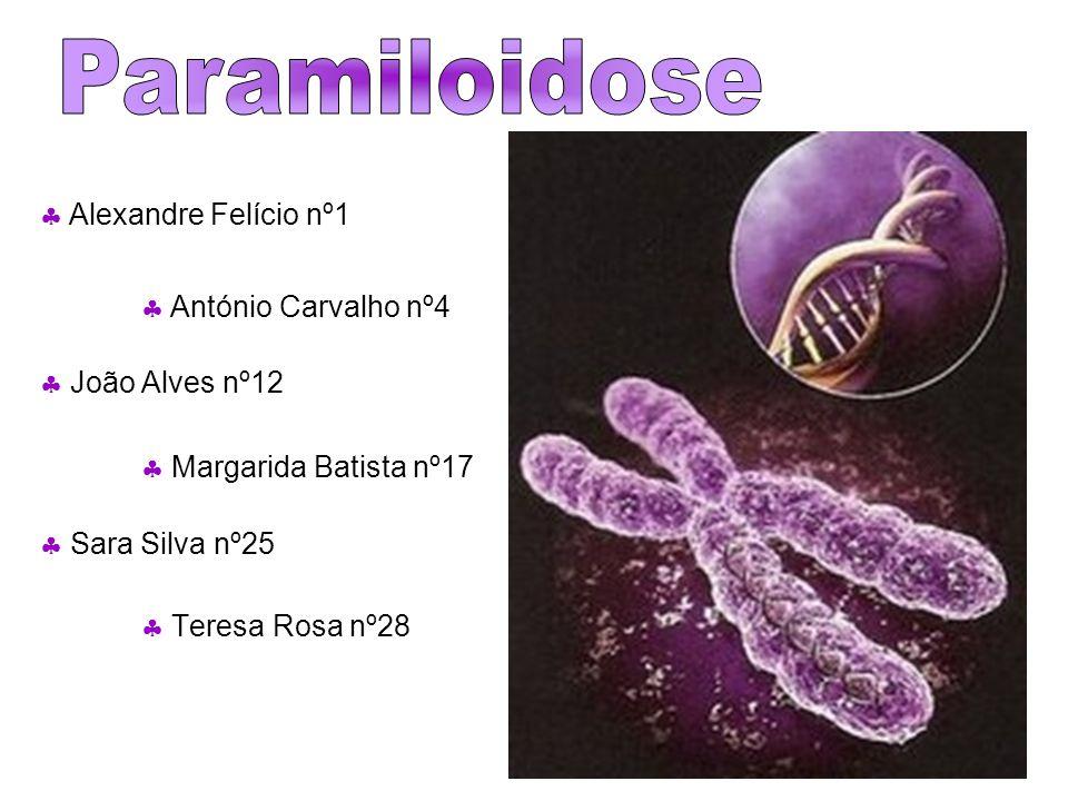 Tipos de Doença As Polineuropatias Amiloidóticas Familiares (PAF) estão englobadas nas Amiloidoses Hereditárias.