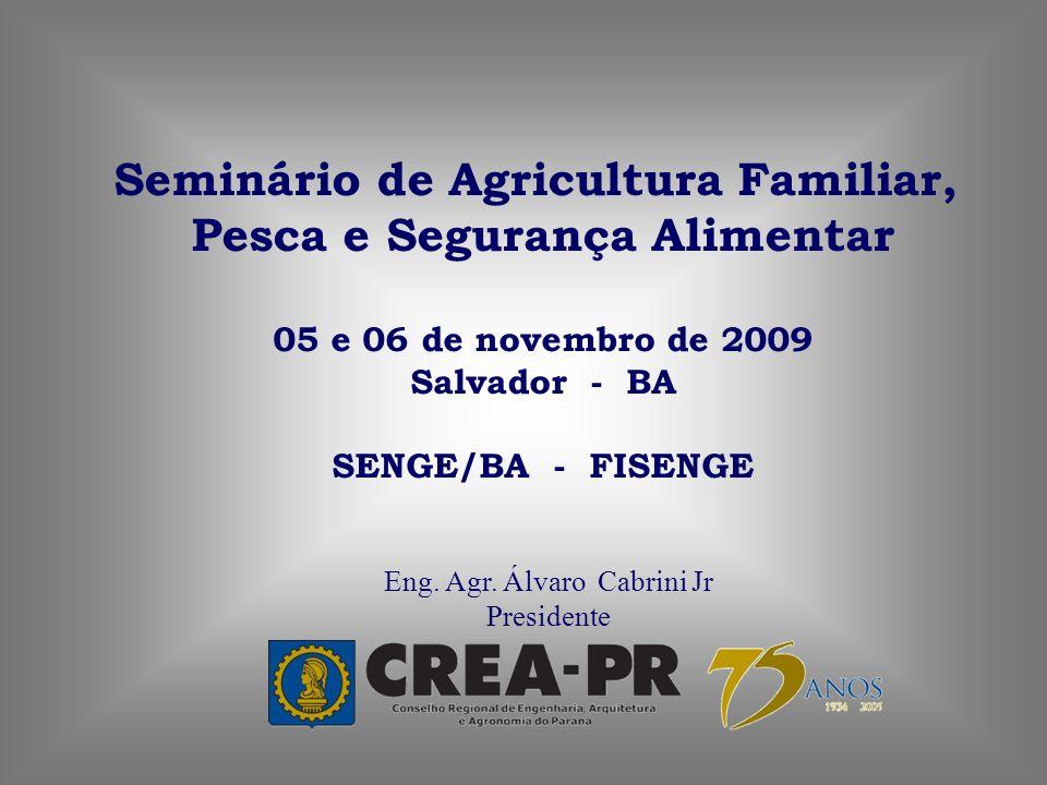 Eng. Agr. Álvaro Cabrini Jr Presidente Seminário de Agricultura Familiar, Pesca e Segurança Alimentar 05 e 06 de novembro de 2009 Salvador - BA SENGE/