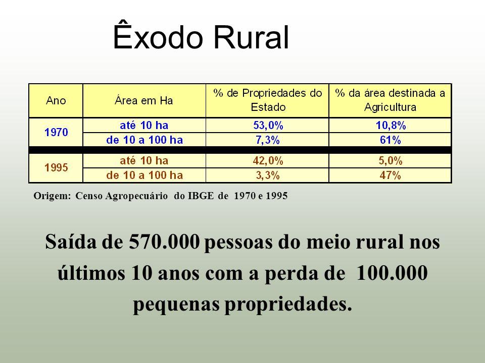 Êxodo Rural Origem: Censo Agropecuário do IBGE de 1970 e 1995 Saída de 570.000 pessoas do meio rural nos últimos 10 anos com a perda de 100.000 pequen