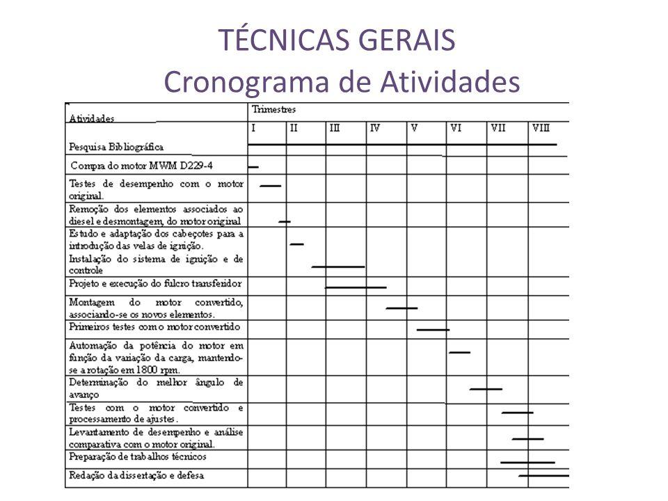 TÉCNICAS GERAIS Cronograma de Atividades