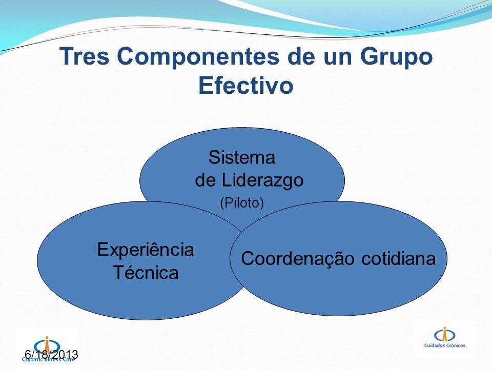 6/18/2013 Tres Componentes de un Grupo Efectivo Sistema de Liderazgo (Piloto) Experiência Técnica Coordenação cotidiana