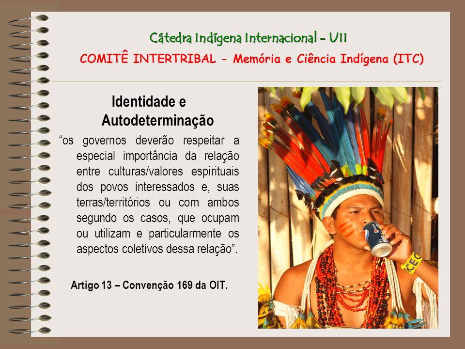Cátedra Indígena Internacional - UII Cátedra Indígena Internacional - UII COMITÊ INTERTRIBAL - Memória e Ciência Indígena (ITC) Identidade e Autodeter