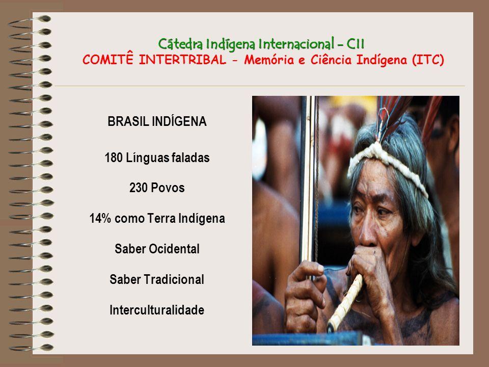 Cátedra Indígena Internacional - CII Cátedra Indígena Internacional - CII COMITÊ INTERTRIBAL - Memória e Ciência Indígena (ITC) BRASIL INDÍGENA 180 Lí