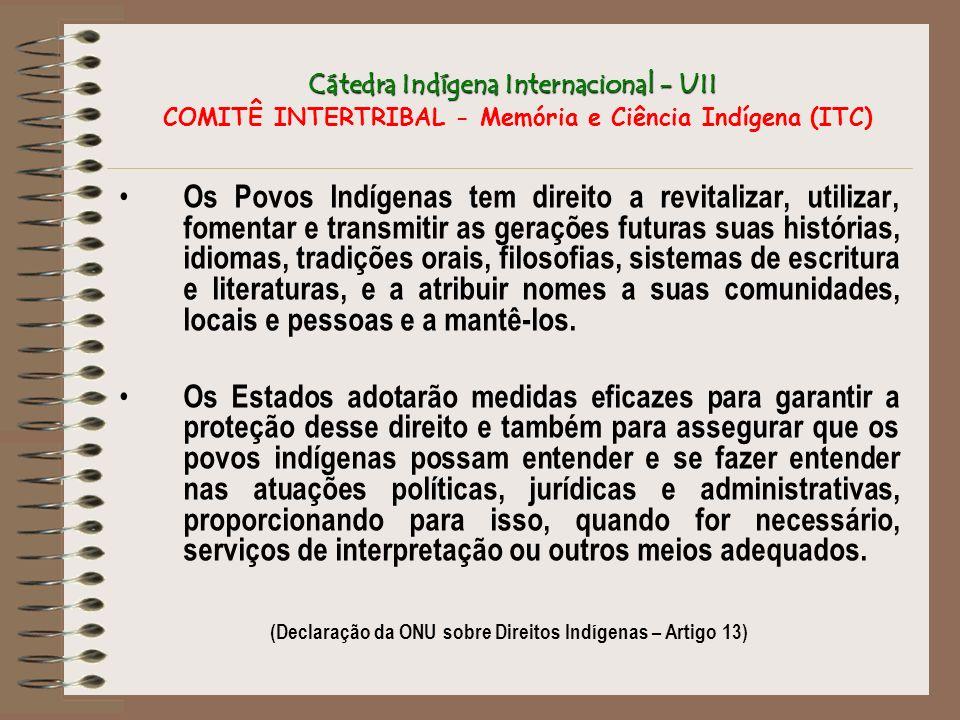 Cátedra Indígena Internacional - UII Cátedra Indígena Internacional - UII COMITÊ INTERTRIBAL - Memória e Ciência Indígena (ITC) Os Povos Indígenas tem