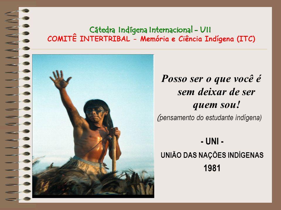 Cátedra Indígena Internacional - UII Cátedra Indígena Internacional - UII COMITÊ INTERTRIBAL - Memória e Ciência Indígena (ITC) Posso ser o que você é
