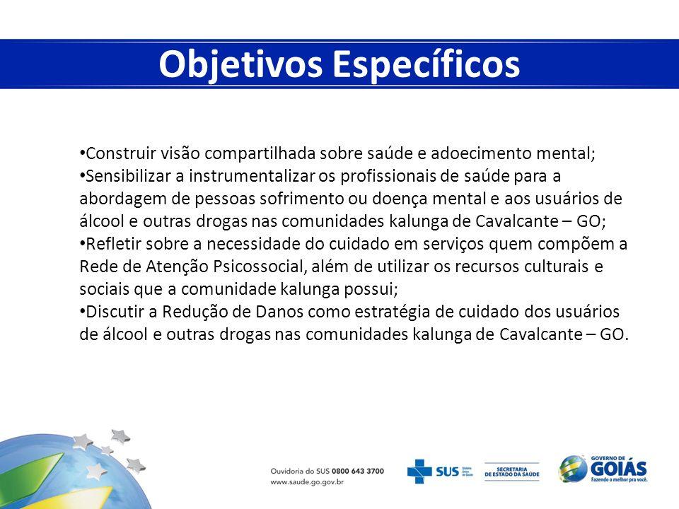 Agentes comunitários de saúde; Profissionais da Estratégia de Saúde da Família; Equipe que comporá o CAPS de Cavalcante-GO.