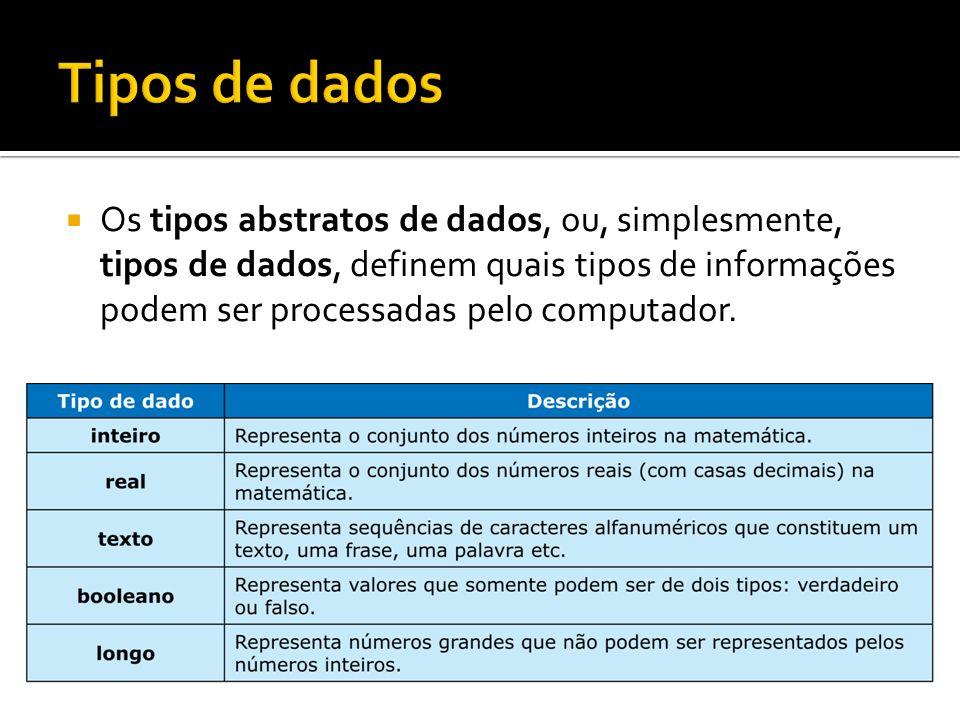 Os tipos abstratos de dados, ou, simplesmente, tipos de dados, definem quais tipos de informações podem ser processadas pelo computador.