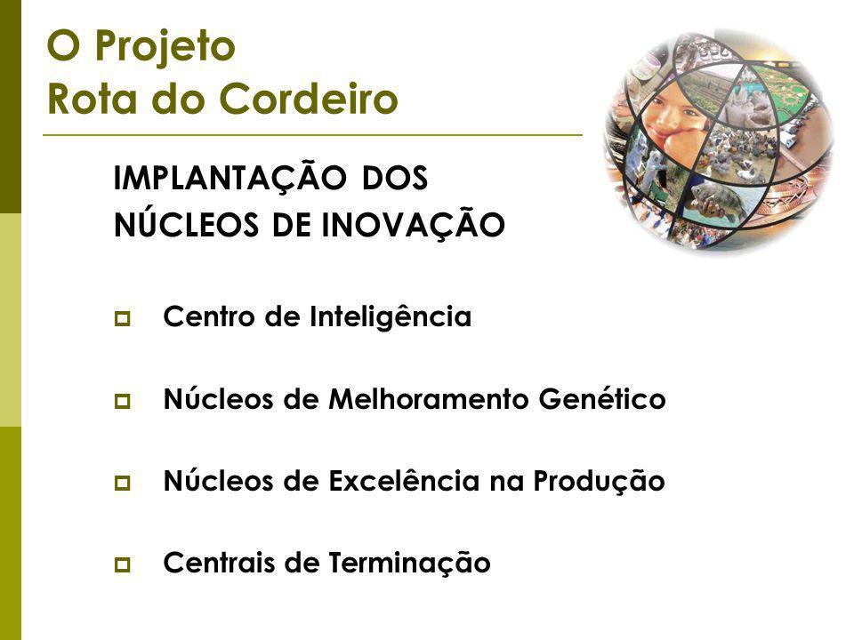 IMPLANTAÇÃO DOS NÚCLEOS DE INOVAÇÃO Centro de Inteligência Núcleos de Melhoramento Genético Núcleos de Excelência na Produção Centrais de Terminação O Projeto Rota do Cordeiro